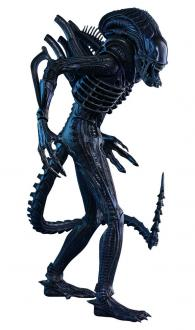 Aliens Action Figure 1/6 Alien Warrior 35 cm