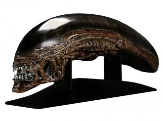Alien Resurrection: New Warrior Head - Replica 1/1 - CoolProps