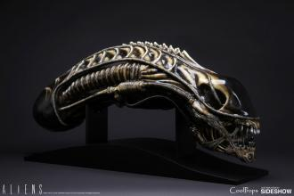 Aliens Replica 1/1 Alien Warrior Head 45 cm